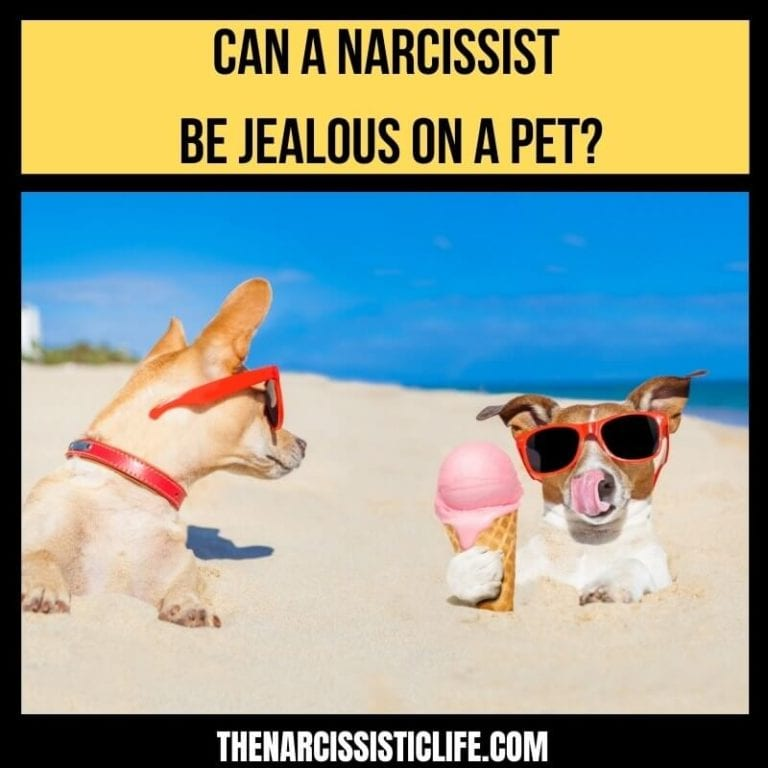 Q & A: Can a Narcissist Be Jealous on a Pet?