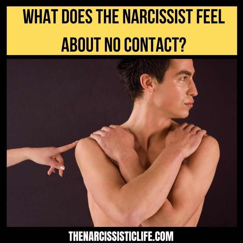 What does the narcissist feel about no contact_