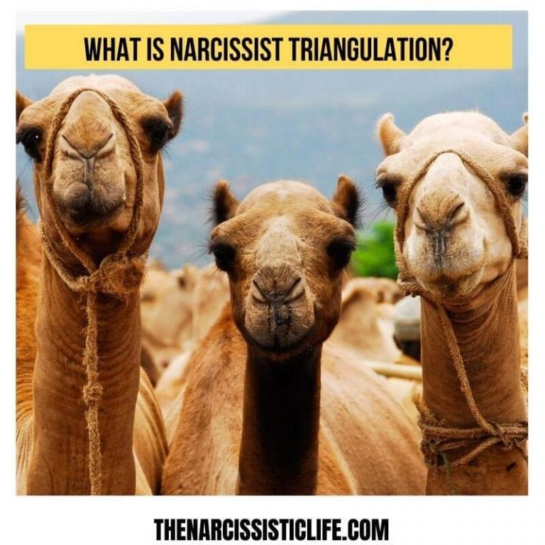 What is Narcissist Triangulation And Easy 6 Ways To Stop It