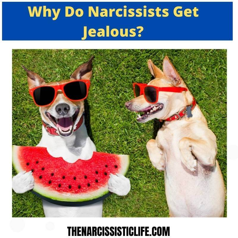 why do narcissists get jealous_