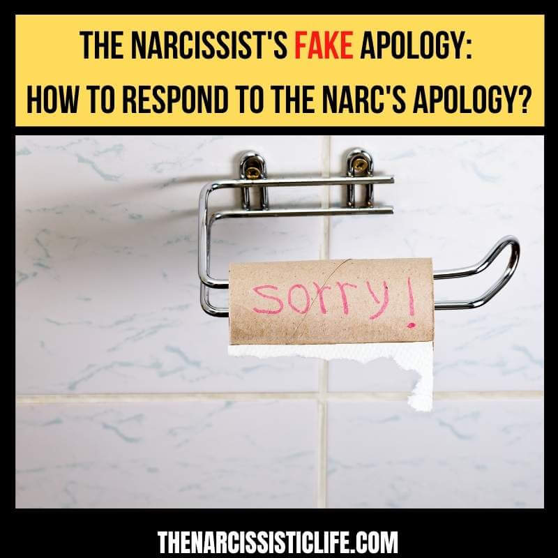 the narcissist fake apology how to respond to the narcissist apology