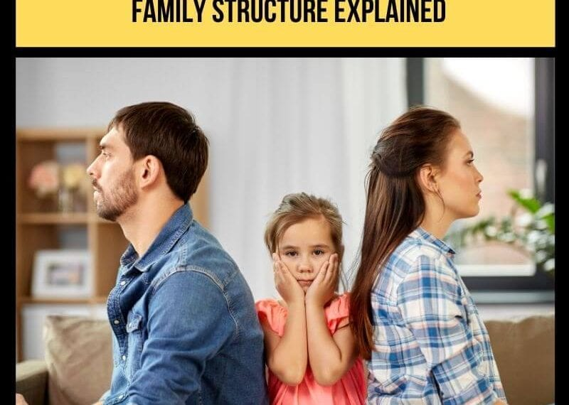 Narcissistic Family Dynamics: The Narcissistic Family Structure Explained